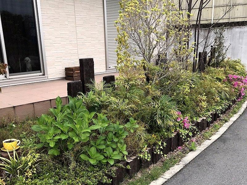 京都府I様邸 玄関周りの人工芝施工