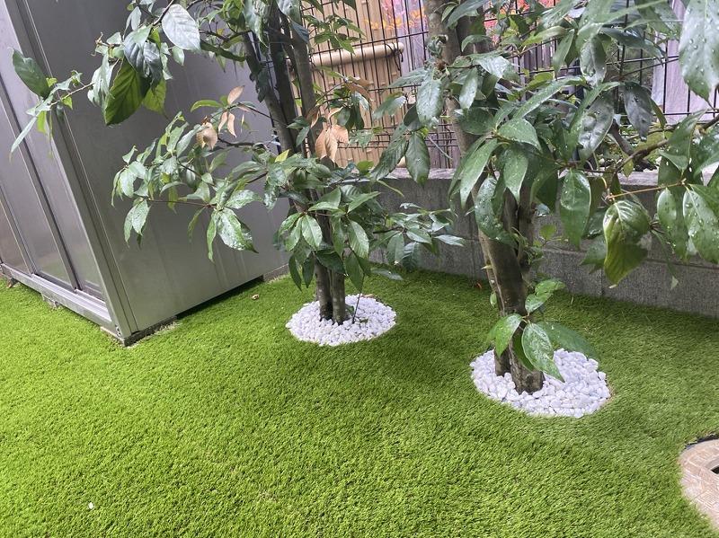 京都府城陽市M様邸 お庭に人工芝施工しました